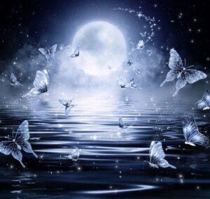 О влиянии Луны в повседневной жизни.